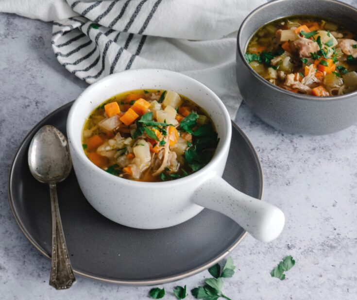 Instant Pot Chicken and Vegetable Soup